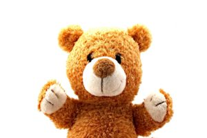 teddy-bear-315390